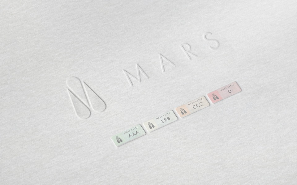 MARS - The Modeling Agencies Rating System